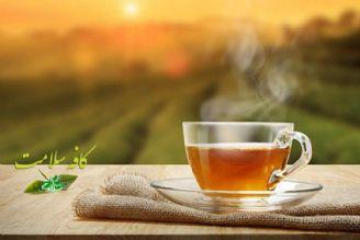 کافه سلامت- گروه بهداشت و تندرستی(زنده)